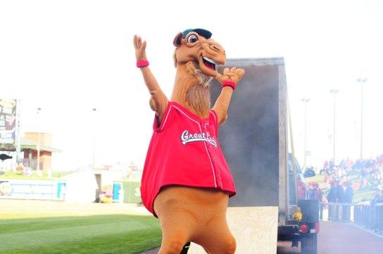 Rall-E-Camel